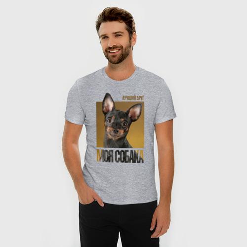 Мужская футболка премиум с принтом Той-терьер, фото на моделе #1