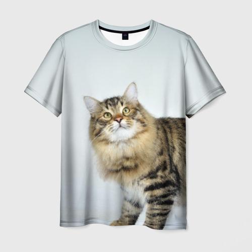 Мужская 3D футболка Кот