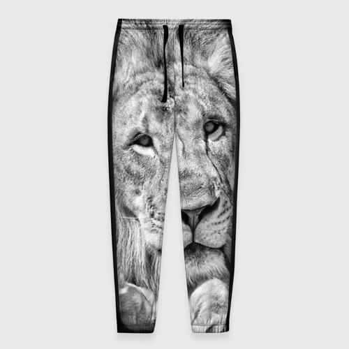 Мужские брюки 3D с принтом Лев, вид спереди #2