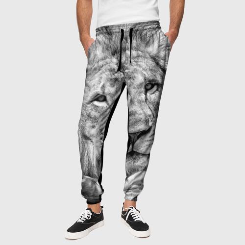 Мужские брюки 3D с принтом Лев, вид сбоку #3