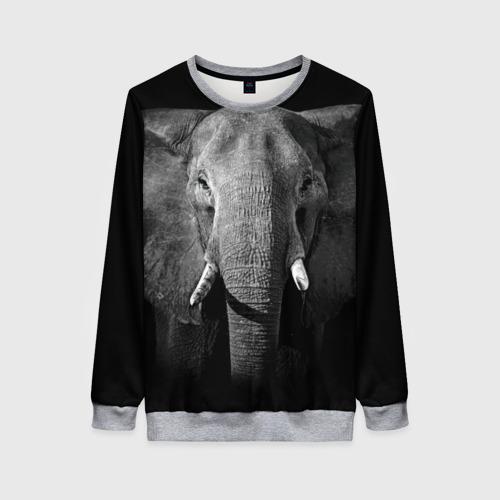 Женский 3D свитшот Слон