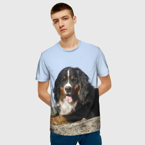 Мужская 3D футболка с принтом Бернский зенненхунд, фото на моделе #1