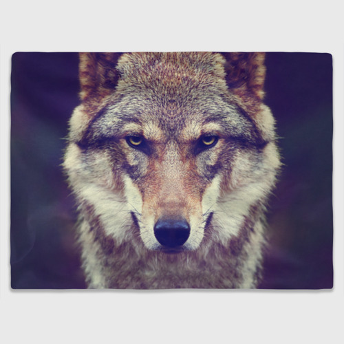 Плед 3D с принтом Wolf, вид спереди #2